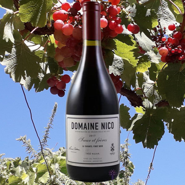 Another sensational Pinot Noir from Domaine Nico