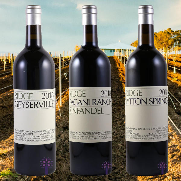 Ridge Vineyards Zinfandels