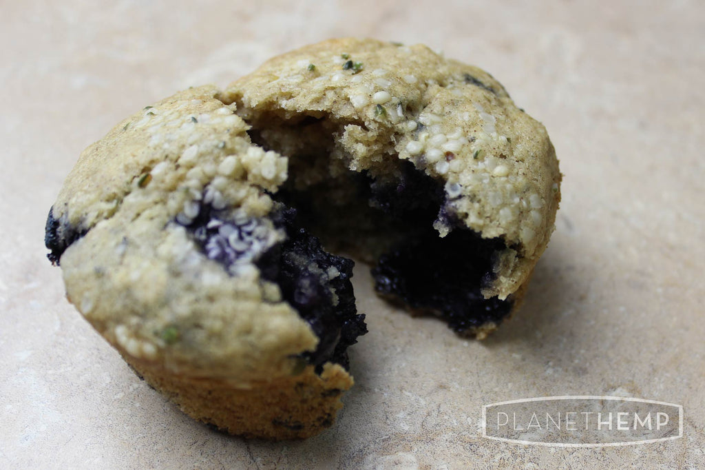 BLUEBERRY BANANA HEMP MUFFINS