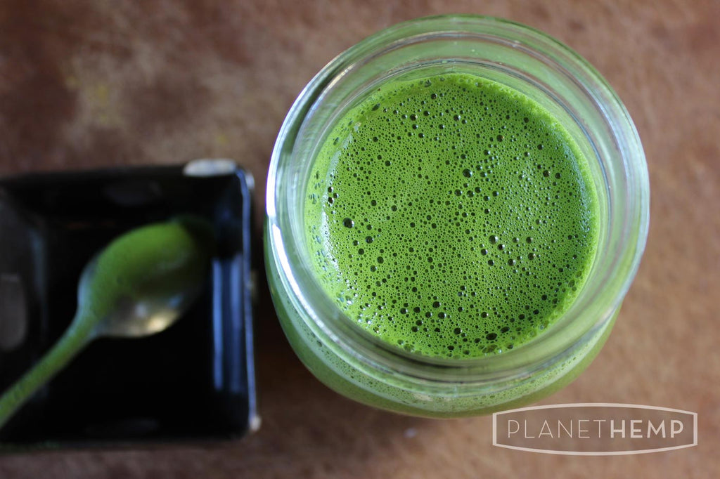 HEMP MATCHA LATTE