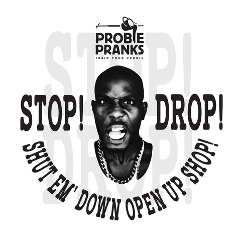 Stop Drop Sticker