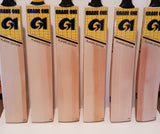 Players Edition Cricket Bat