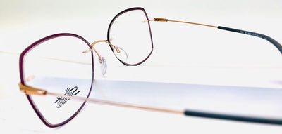 Silhouette Dynamic Colorwave eye glasses side view 1