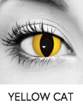 Yellow Cat Halloween Contact Lenses