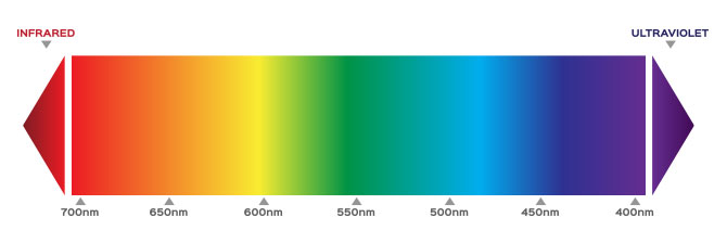 Wavelength Spectrum of Visible Light