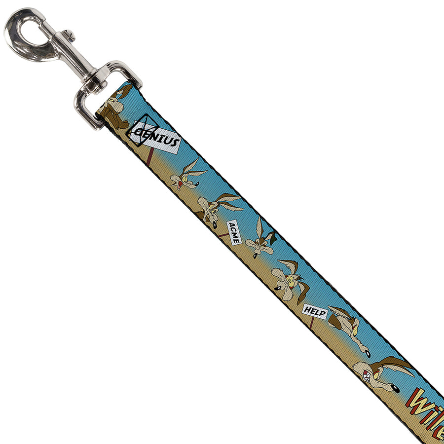 Dog Leash - WILE E. COYOTE Expressions/Signs Desert
