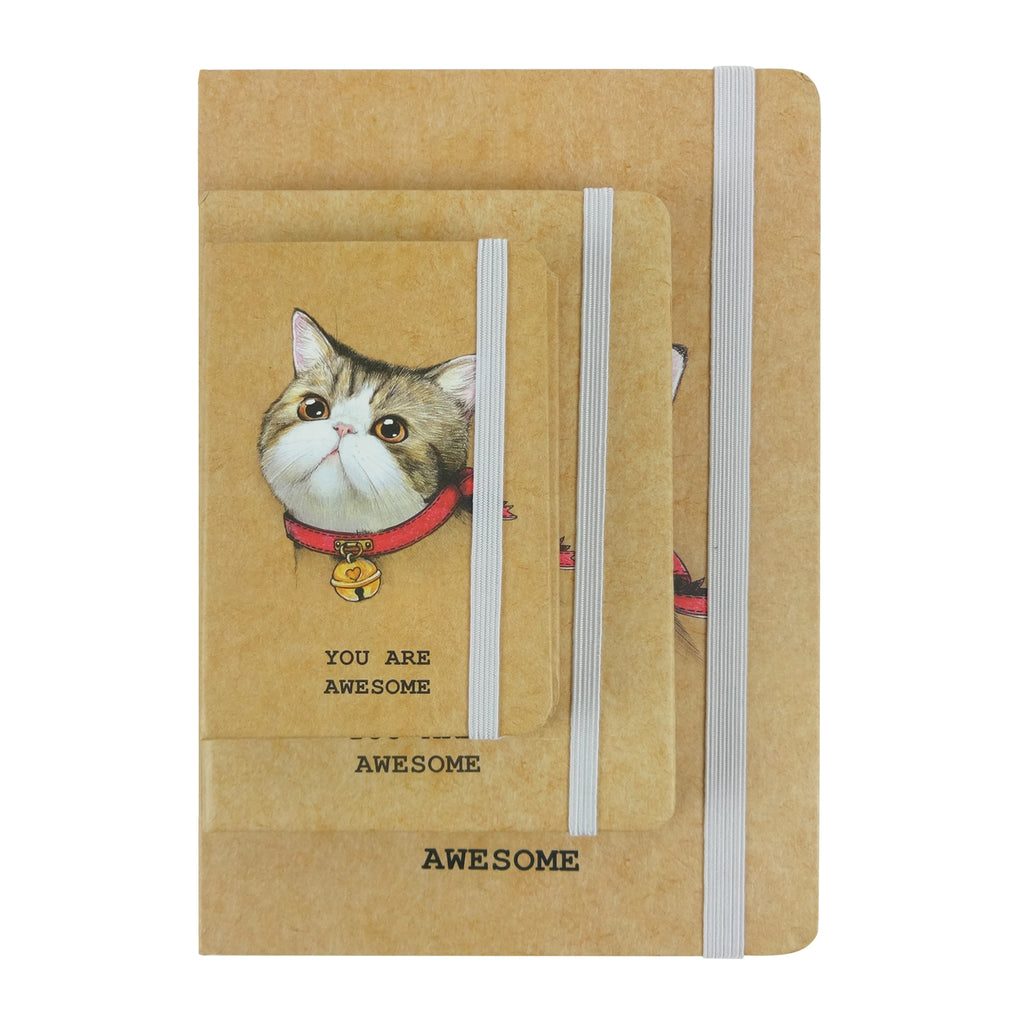 A5 / A6 / A7 Cat Red Heart Diary - Set of 3