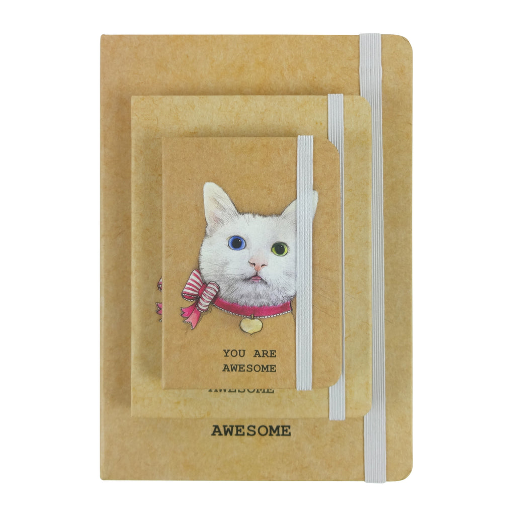 A5 / A6 / A7 Cat Pink Bow Diary - Set of 3