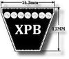 XPB Section V Belts