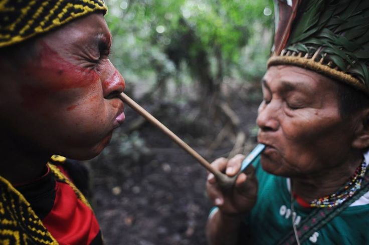 The Modern Shamanic Guide to Taking Rapé – the Sacred Medicinal Snuff of the Amazon