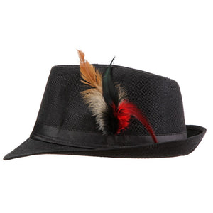www.mensswaggerapparel.com Quick shipping low prices men's Hat's Trendy  feathers Fedora Trilbyomen Hat Men Black