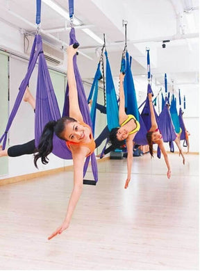 Flying Yoga Hammock Swing Sling Trapeze Gym Inversion
