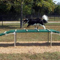 Dog Walk Agility Component for Dog Park