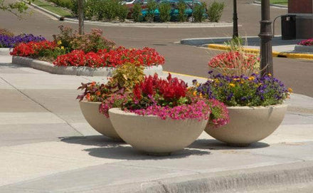 Large round outdoor concrete planters for sale perfect for flowers