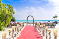 VIP Red Carpet Stanchion Kit - 4 Ft Wide / 15 Ft Long Carpet with Stanchion Kits