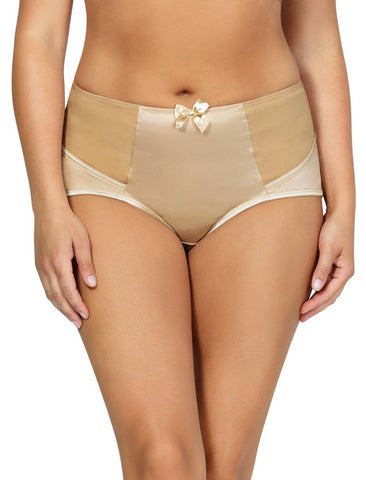 Charlotte High Waist Brief 6917