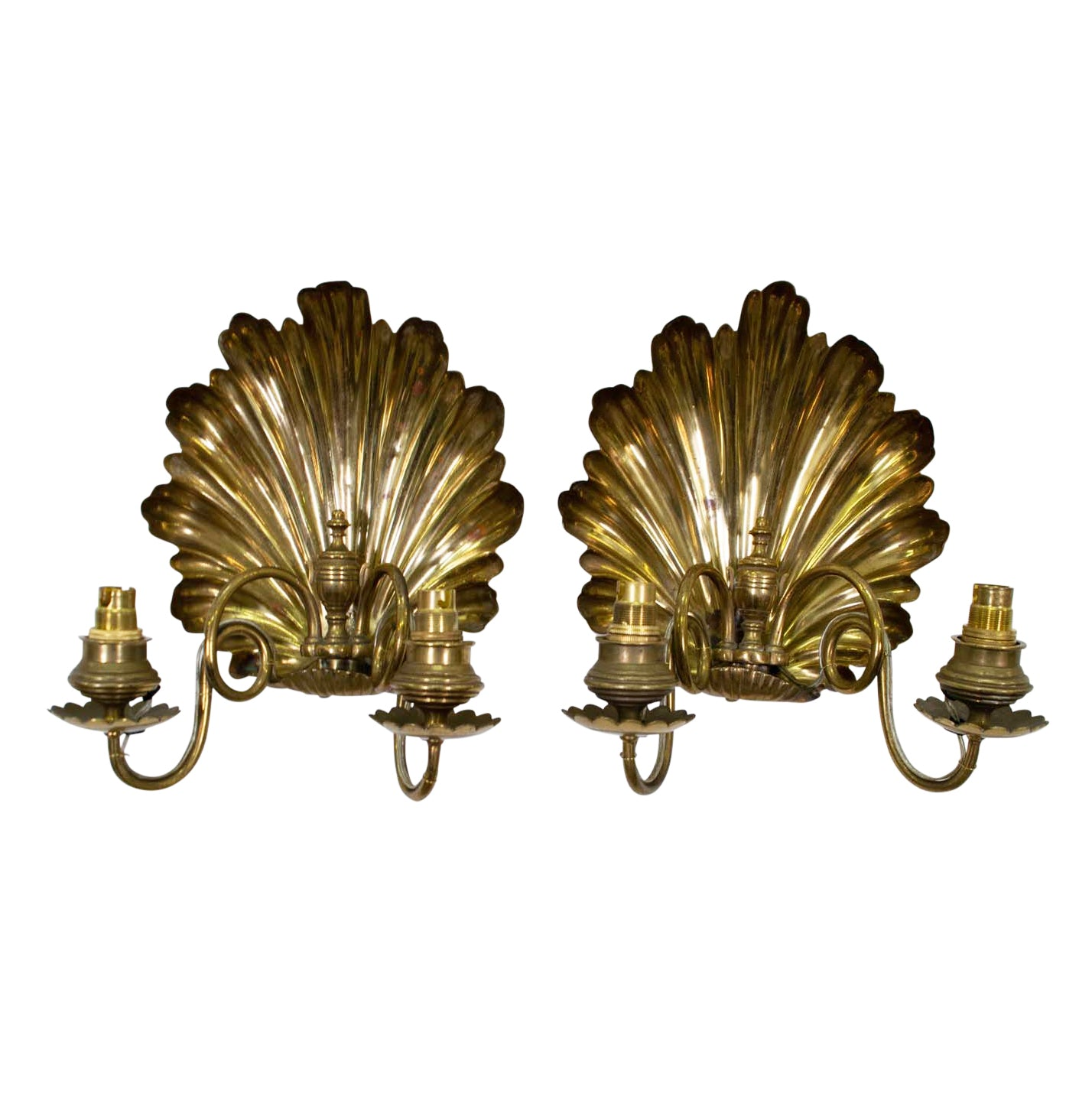 Pair of 19th Century English Shell Sconces