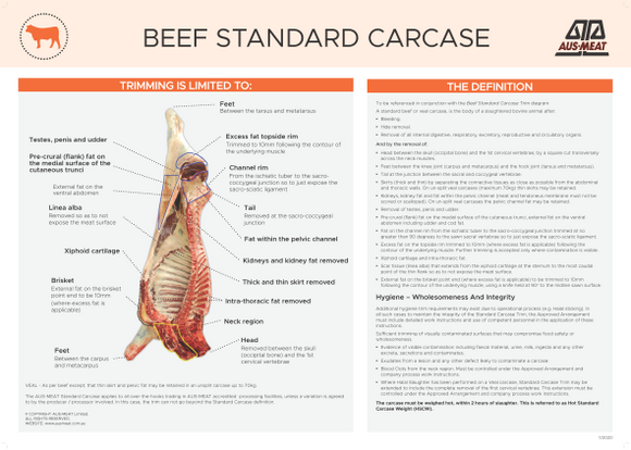Beef Standard Carcase Poster