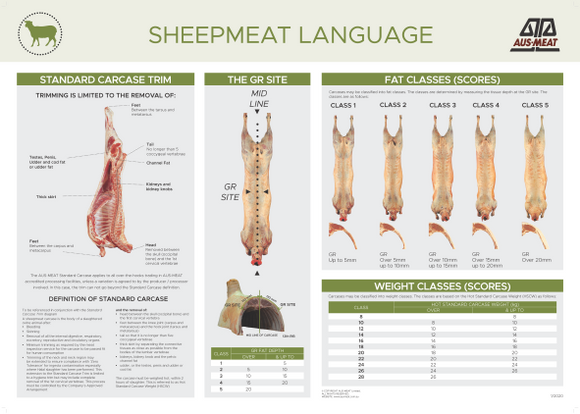 Sheepmeat Language Poster