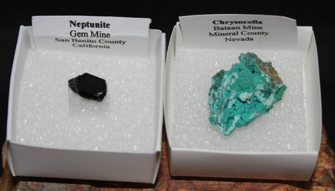 CHRYSOCOLLA & NEPTUNITE RAW CRYSTAL MINERAL SPECIMENS, USA (M363)