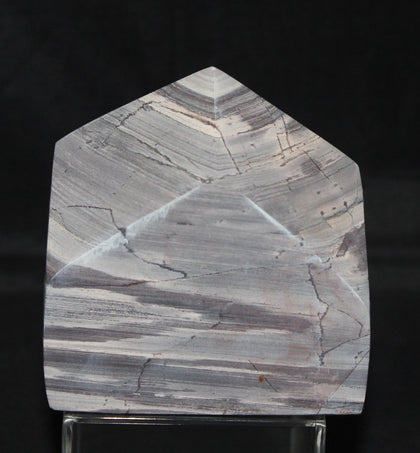 PRIMORDIAL STONE, FOSSIL CRYSTAL, 1200 Million Years, (P885)