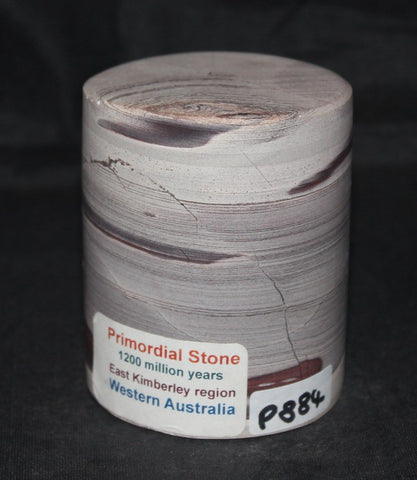 PRIMORDIAL STONE, FOSSIL CRYSTAL, 1200 Million Years, (P884)