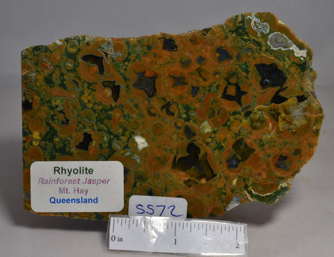 RHYOLITE RAINFOREST JASPER, Polished Slice, Mt Hay QLD Australia (S572)