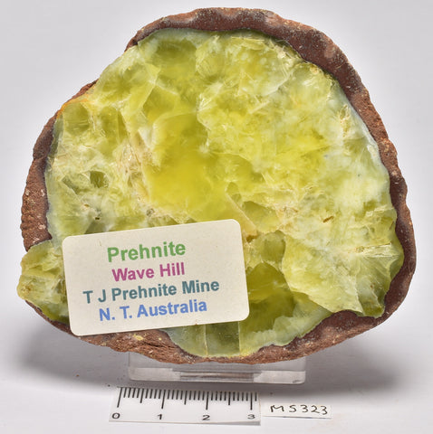 PREHNITE Polished  245g, Wave Hill, AUSTRALIA MS323
