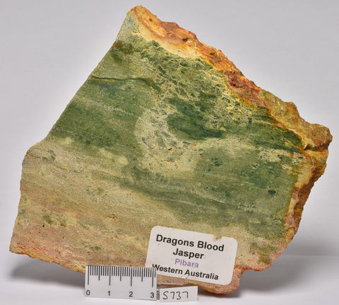 DRAGONS BLOOD JASPER POLISHED SLICE S737