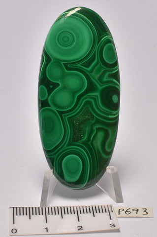 MALACHITE Polished Cabochon 5.5 cm P693