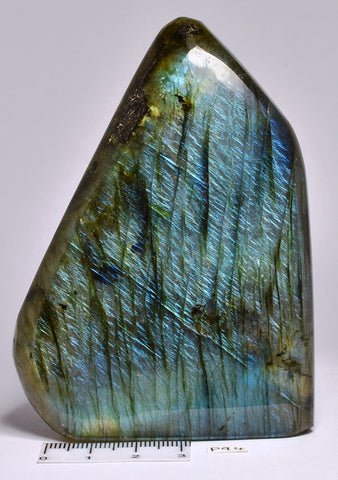LABRADORITE CRYSTAL Polished Freeform, Madagascar P94