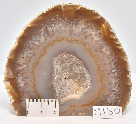 Agate Polished Geode Sliced from Brazil  M130