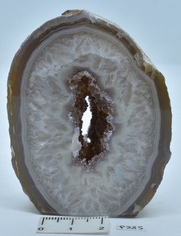 Agate Polished Geode Sliced from Brazil P285