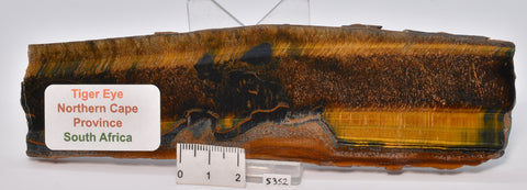 TIGER EYE Polished Slice, South Africa S352