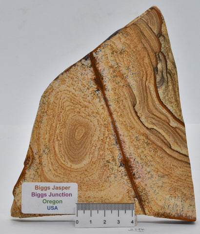 BIGGS JASPER SLICE, OREGON USA S794