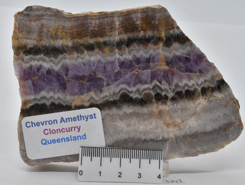 CHEVRON AMETHYST SLAB, POLISHED, QUEENSLAND, AUSTRALIA S843