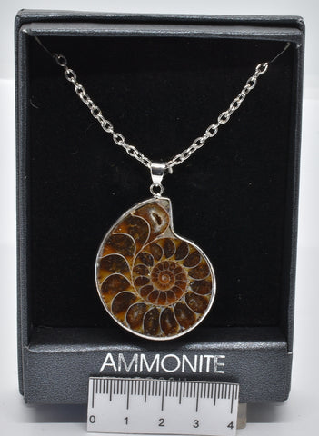 AMMONITE FOSSIL PENDANT ON A 60 cm CHAIN J66