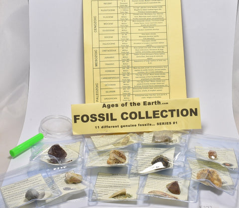 FOSSIL COLLECTION KIT, AGES OF THE EARTH, 11 DIFFERENT FOSSILS. (F272)