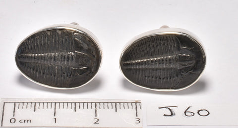 TRILOBITE FOSSIL CUFFLINKS SET IN STERLING SILVER (J60)