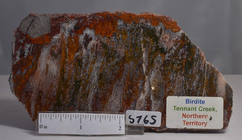 BIRDITE Polished CRYSAL SLICE, Tennent Creek, N.T Australia (S765)