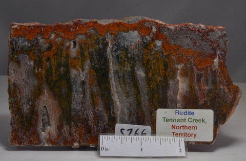 BIRDITE Polished CRYSAL SLICE, Tennent Creek, N.T Australia (S766)