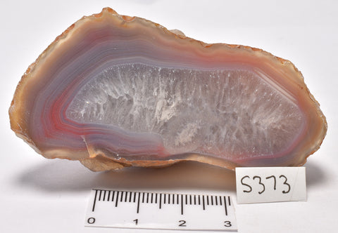 AGATE CREEK, High Grade Polished AGATE half, AUSTRALIA S373