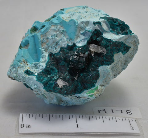 CHRYSOCOLLA, DIOPTASE, Crystal Mineral, Zaire, Africa (M178)