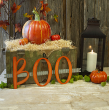 "BENDABLE ""BOO"" RIBBON - The Roundtop Collection"