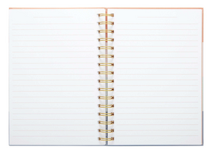 Stripes Perforated Spiral Journal