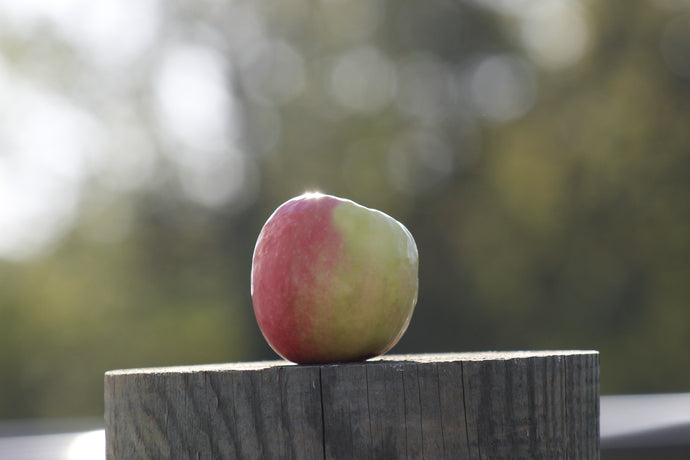 We are ending U-Pick apples on September 21.