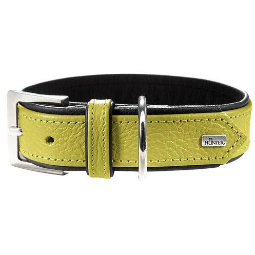 Hunter Dog Collar - Capri