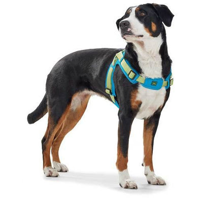 Hunter Dog Harness - Vario