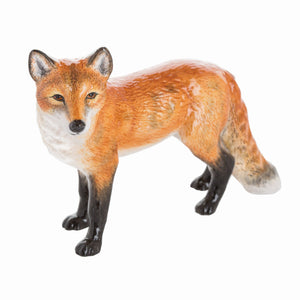 John Beswick Wildlife - Fox