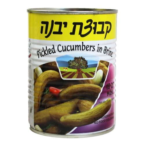Kvuzat Yavne Cucumbers (Pickles) In Brine Mini (18-25) 540G